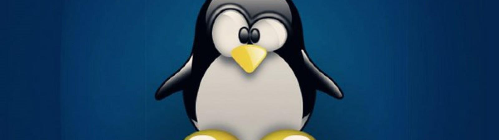 Corso Online di Sistemista Linux